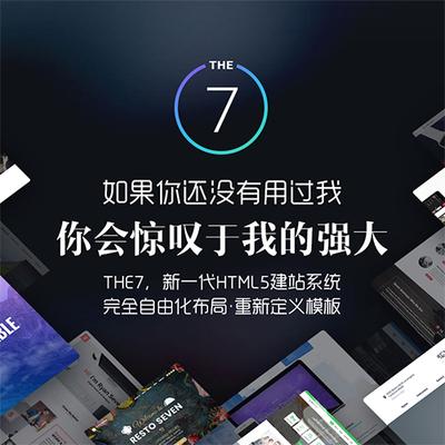 the 7英中加速8.5.0.1插件演示外贸网站10G视频Wordpress主题the7