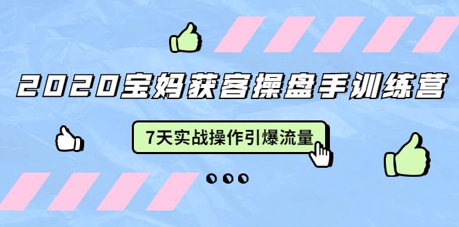 2020宝妈获客操盘手训练营:7天实战操作引爆 母婴、都市...