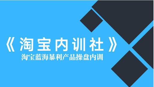 盗坤淘宝内训社,13节电商蓝海暴利产品实操培训课
