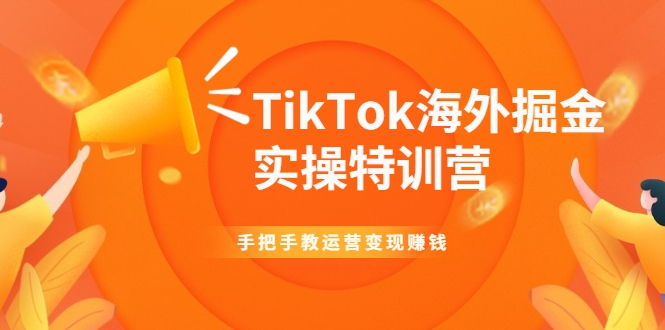 TikTok海外掘金实操特训营:手把手教运营变现赚钱【视频...